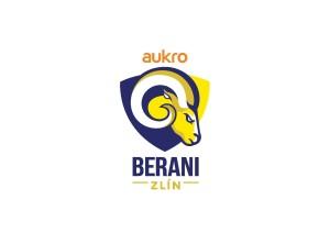 logo_aukro_berani-page-001
